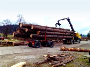 transport i rozładunek drewna